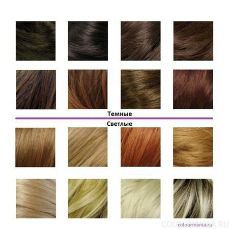hair_color_chart